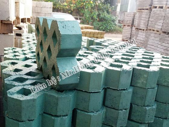 Gạch Block 31