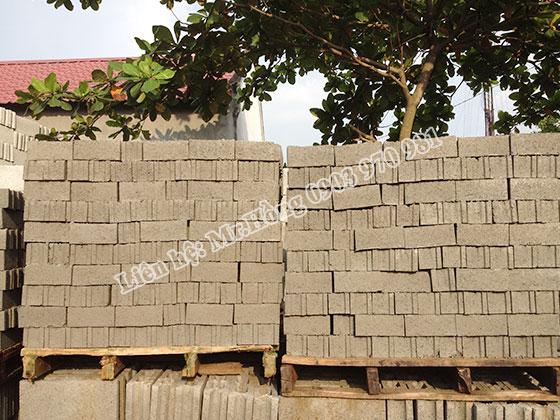 Gạch block 10